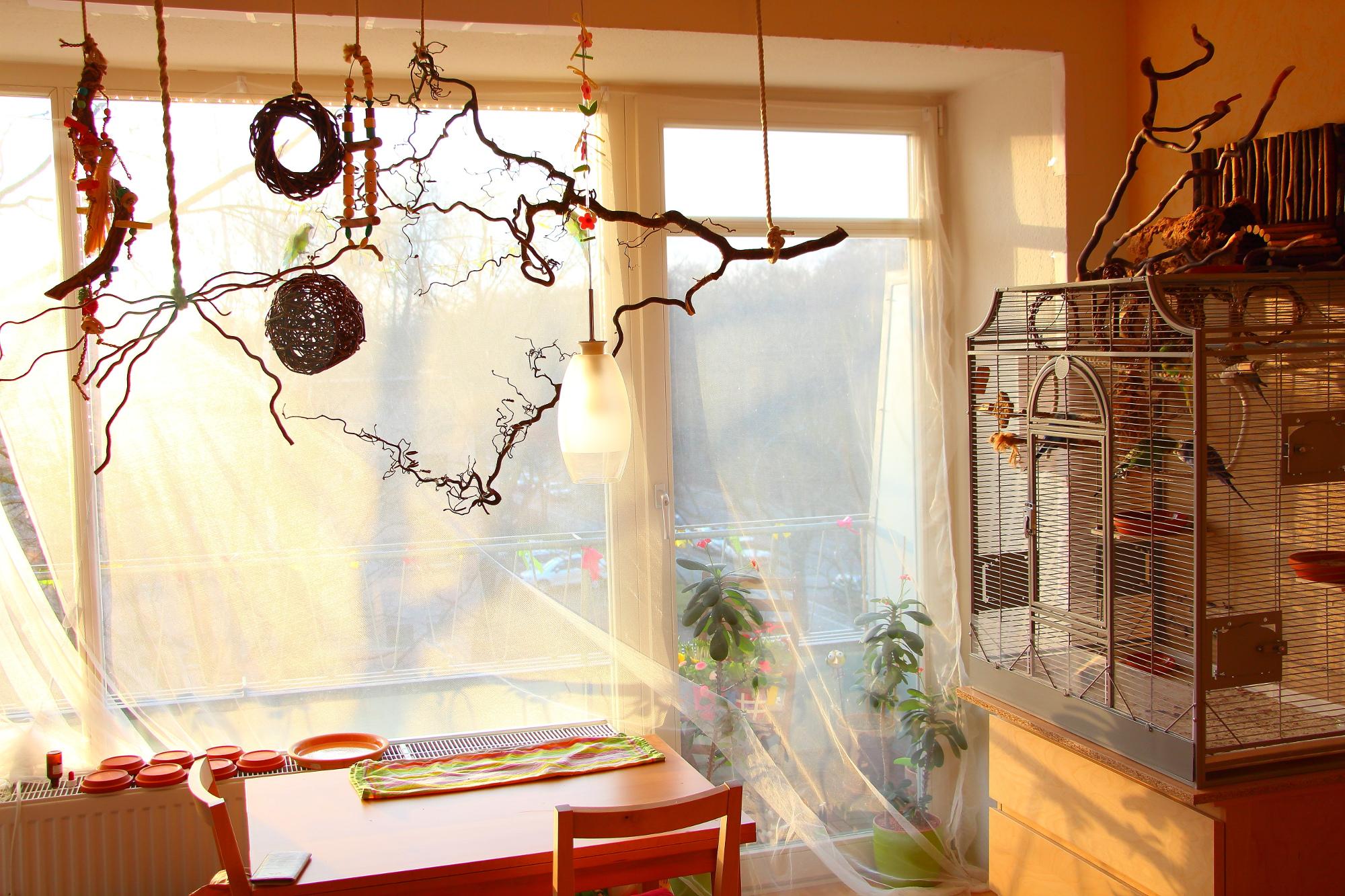Luxus Gardinen Für Breite Fensterfront Schema