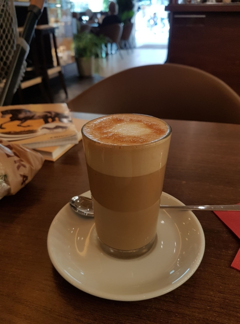 wellensittiche blog_latte macchiato mutter teaser