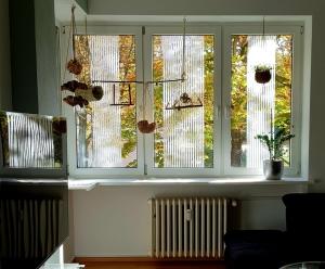 Fenster richtig sichern_die Kotbolde_instagram